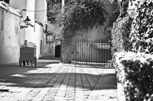 reto 29 y sevilla Manuel Fernández Arcos