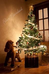 reto 61 navidad Marco Antonio Moreno Rueda